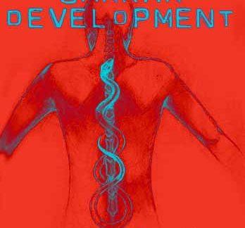 Chakra Development